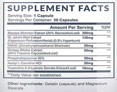 Neuroignite Ingredients